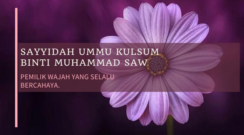 Sayyidah Ummu Kalsum Binti Muhammad Saw, Pemilik Wajah yang Selalu Bercahaya
